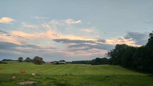 Home Sweet Home Kentucky  Commonwealth Bluegrass State Horse Clouds Clouds And Sky
