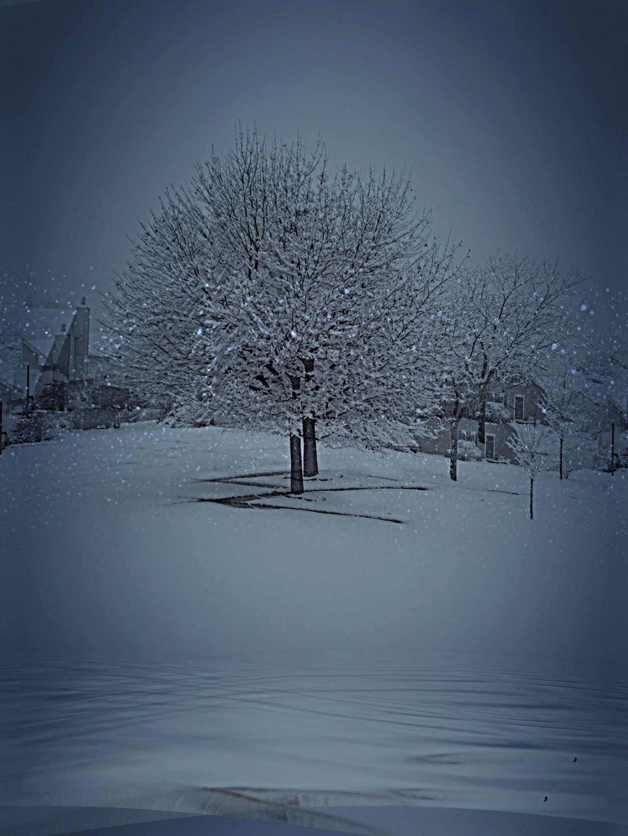 Winter Wonderland Oswego, IL United States Winter Trees Winter Sky Snowing Again Snowing ❄ Snow ❄ First Snowfall The Week On Eyem No People Day Beauty In Nature Outdoors Landscape Landscape_Collection Landscape_photography Nature Beauty In Nature Tranquility Majestic Beauty In Nature,