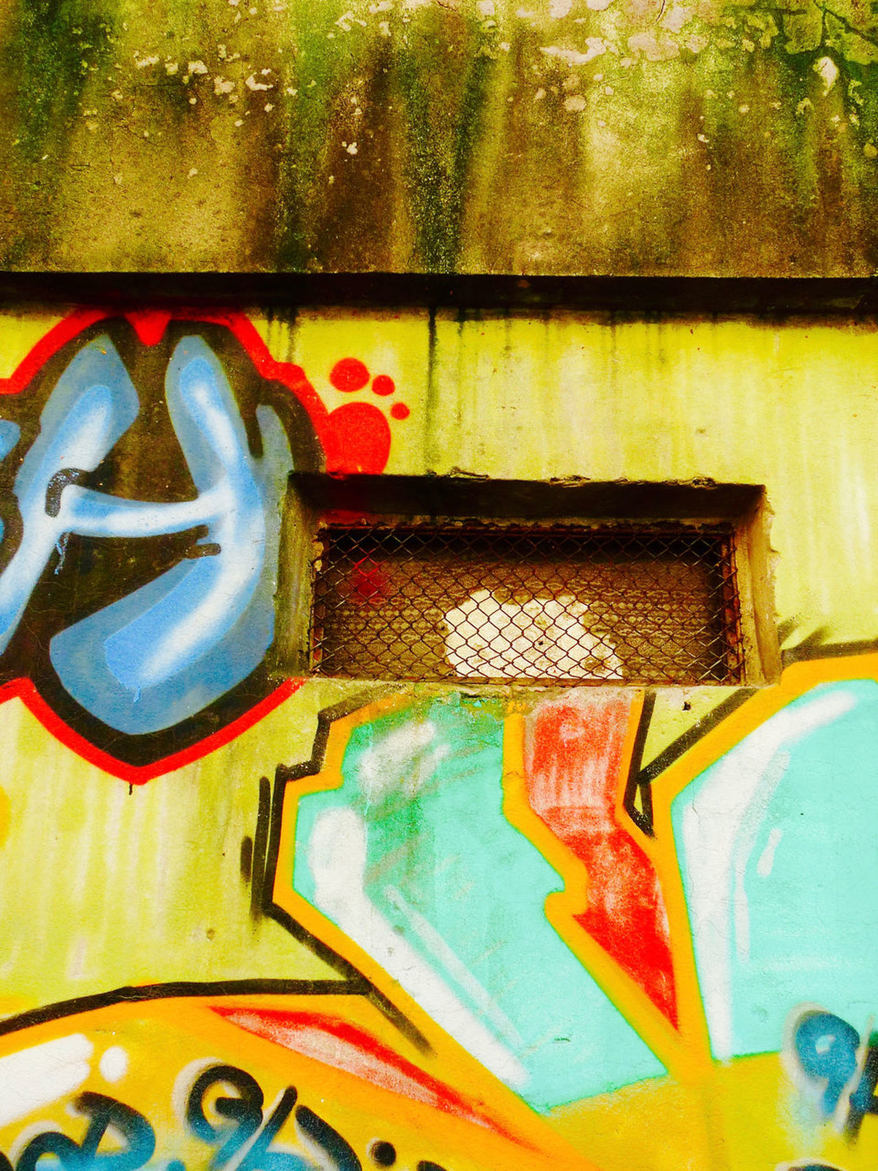 Building Exterior Built Structure Decay Ecological Interaction Grille Moss Multi Colored No People Outdoors Paint Graffito Street Art Yellow