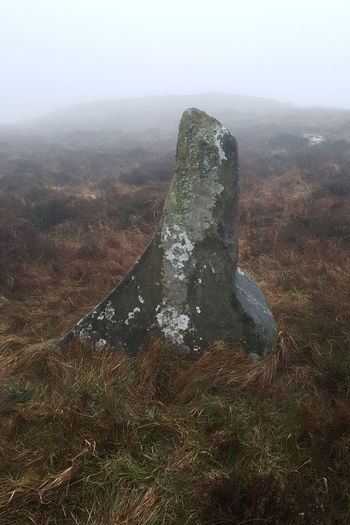 Blanket Bog Misty Day Mountain Outdoors Rock - Object Standing Stone