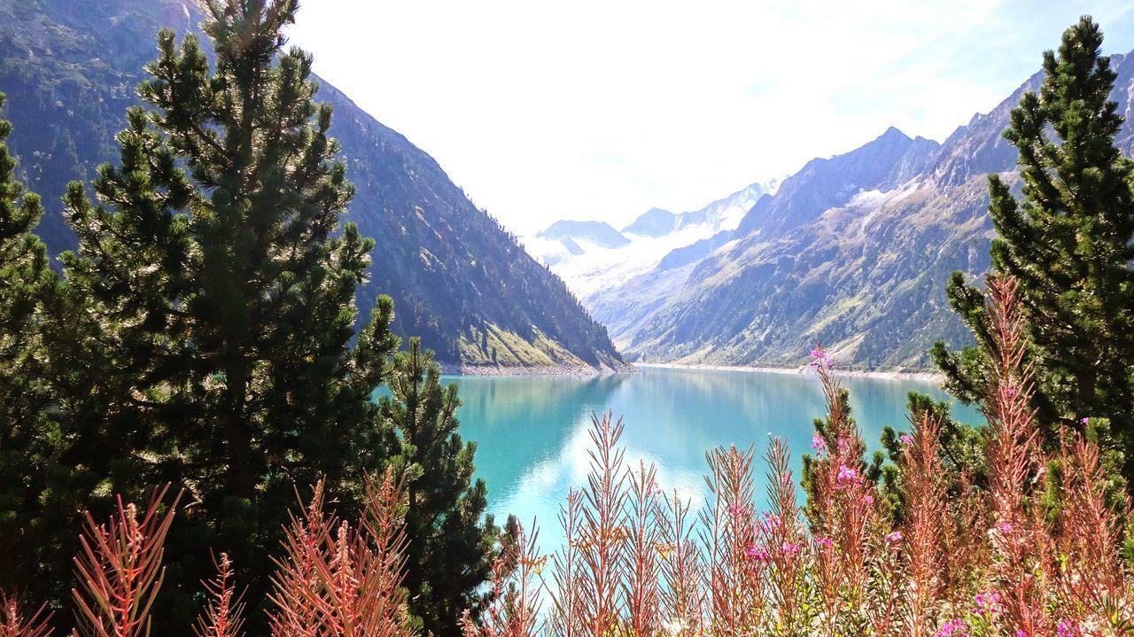 Lake Lake View Schlegeisspeicher Tirol  Austria Alps Alpen Gletscher Hydroelectricpowerplant Water Reflections Water Reservoir Nature Glacier Mountains Mountain View Trees Fir Bush Schlegeis