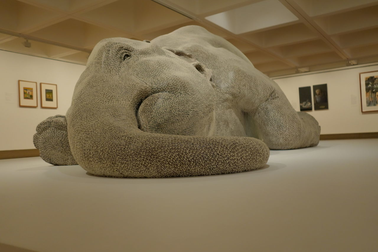 Elephant Sculpture Asia Pacific Triennial Of Contemporary Art