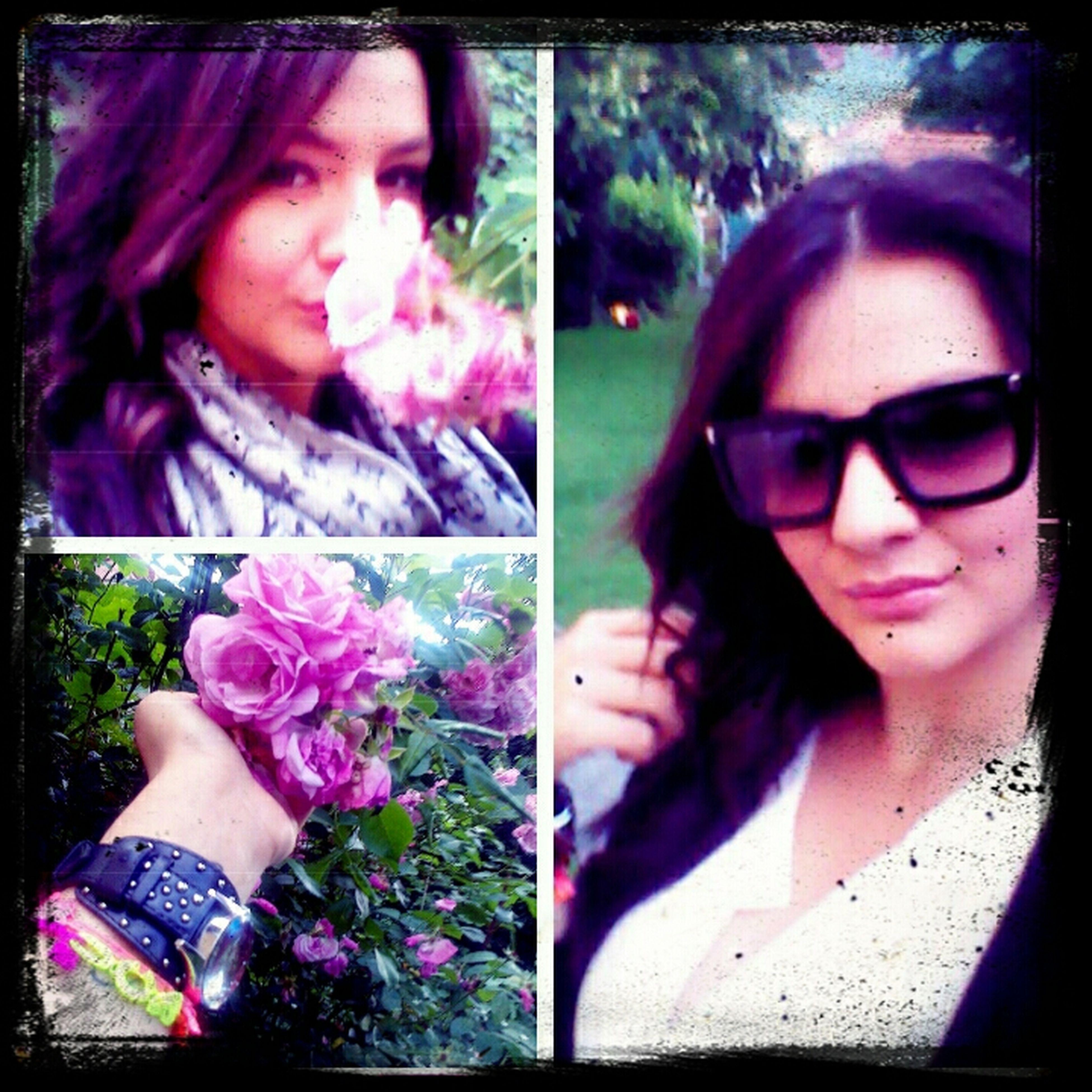 Garden Niceday