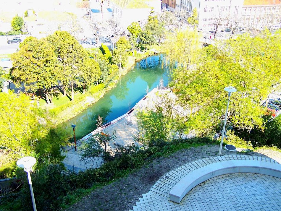 City Nature Cityscapes Garden Photography Green Spaces Laisure Outdoors Relxing Walk In The Park