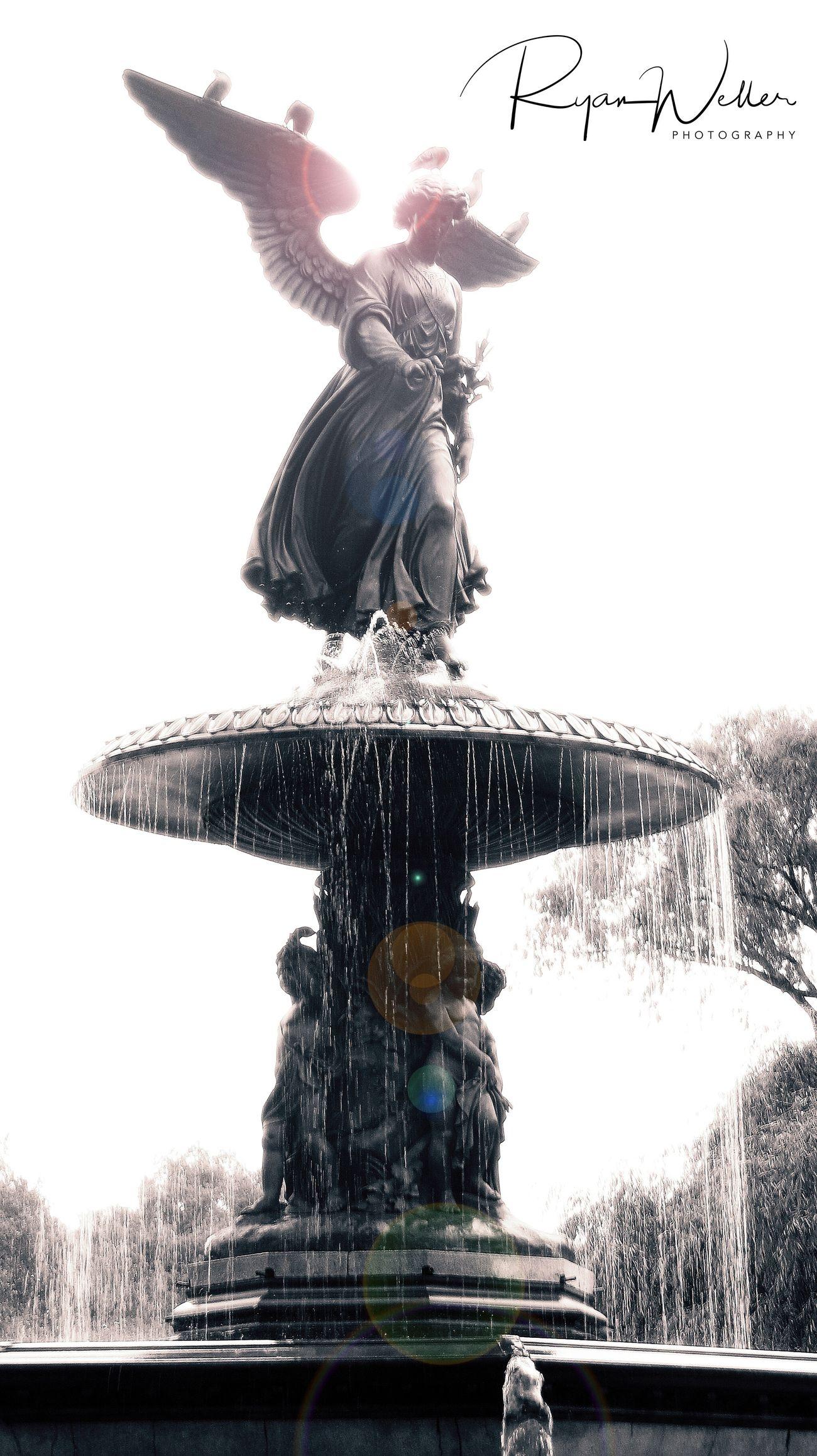 Statue Travel Destinations Outdoors Sculpture Water Manhattan New York City Central Park Lighting
