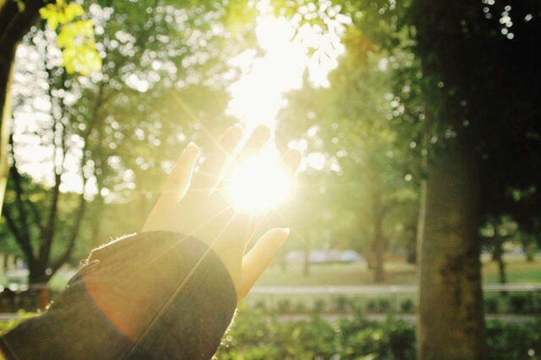 SUN 綺麗 Japan 日本 Photo Beautiful Photography 美しい 太陽 Sun 光 指輪 道 People Street Trip ASIA 映画 Tokyo Friend Girl Sunrise Hand