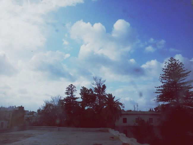 Cold Winter ❄⛄ ?☔ Tunis Tunisia Perfection Beautiful School 13h