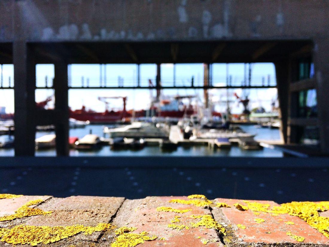 Harbour & Shipyard EyeEm Global Meetup EEA3 - Amsterdam Urbanexploration