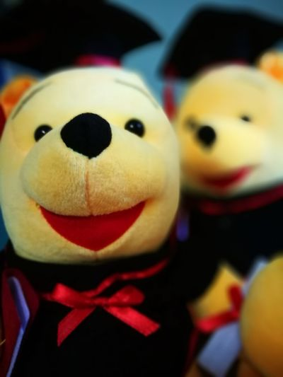Toy Animal Representation Close-up Childhood Indoors  Stuffed Toy No People Panda - Animal Red Representing Day Astrology Sign