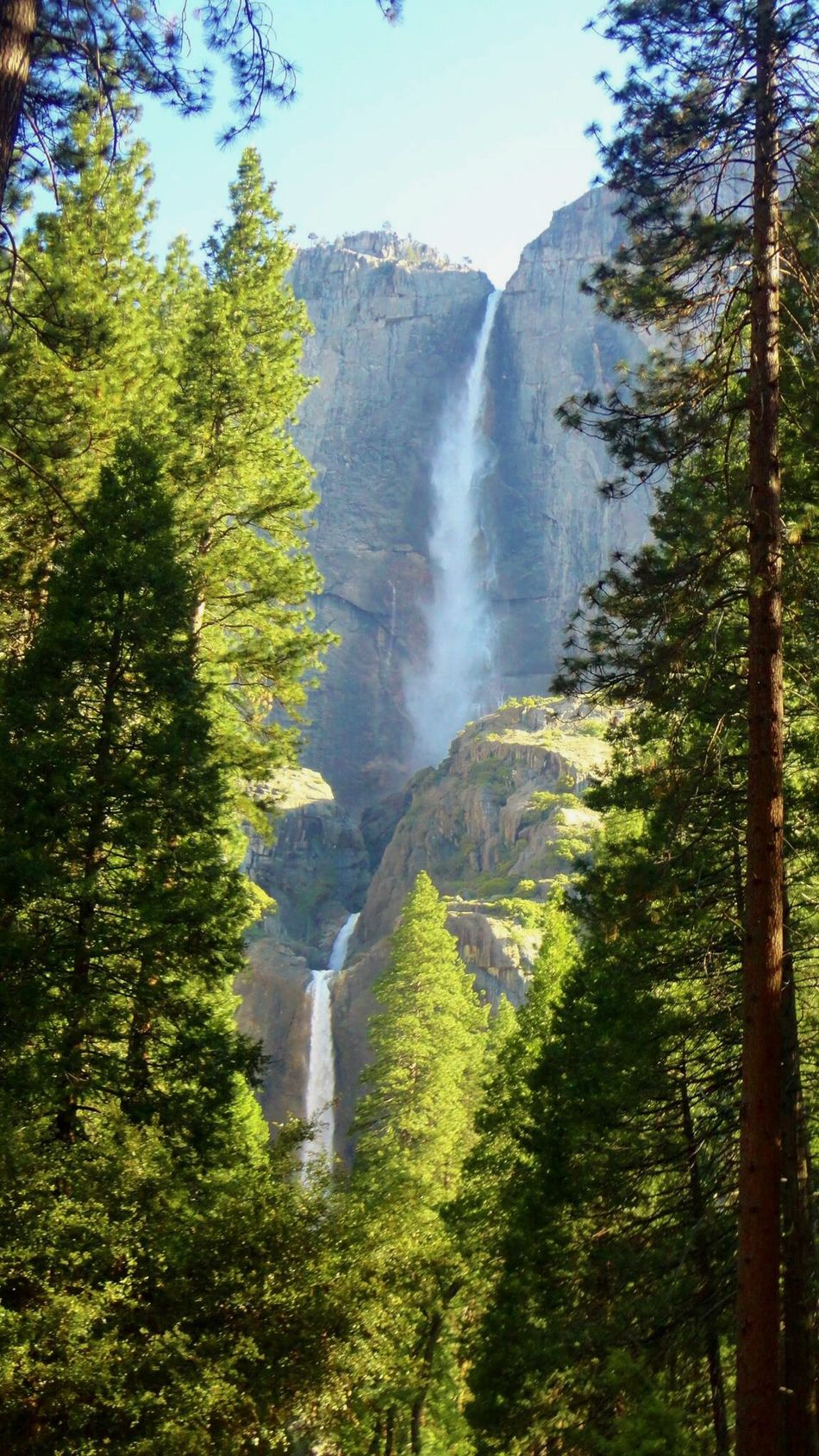USA Yosemite National Park Yosemite Fall Landscape America Waterfall_collection UNESCO World Heritage Site Yosemite California High Looking Up Spectacular EyeEm Best Shots United States Wonderful Day Worldwide_shot Waterfall California Love Yosemite Falls Yosemitenationalpark ヨセミテ国立公園 アメリカ 滝 カリフォルニア 世界遺産