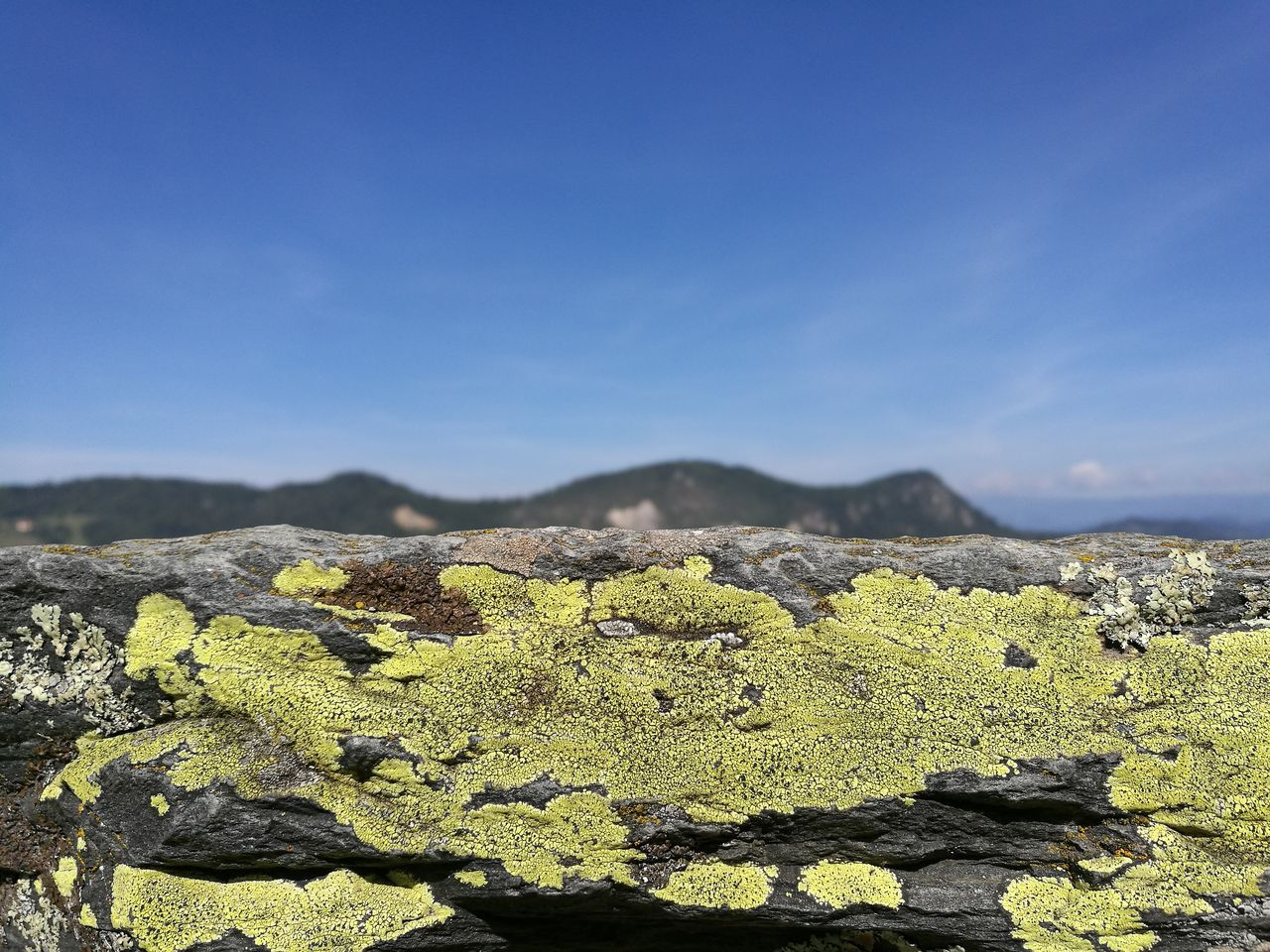 Picoftheday at Hochosterwitz Castle Austria Lichen Yellow Blue Sky Mountains High Resolution Hi Res Highquality Colors and patterns Maximum Closeness