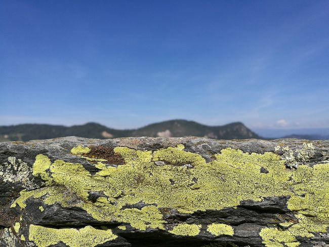Picoftheday at Hochosterwitz Castle Austria Lichen Yellow Blue Sky Mountains High Resolution Hi Res Highquality Colors And Patterns