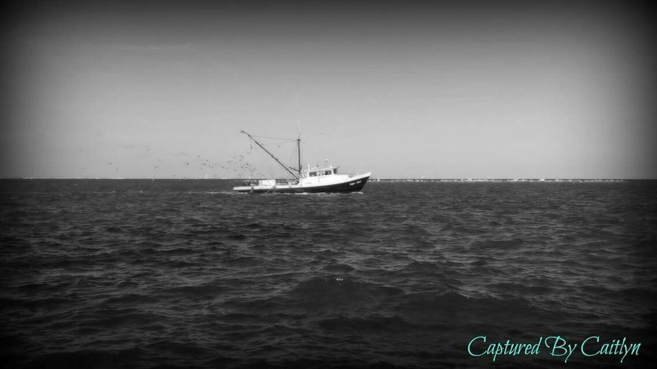 Shrimpboat B&w Capturedbycaitlyn