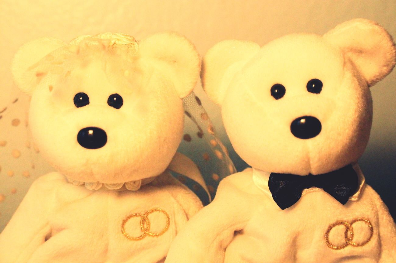 Stuffed Animals Marriage  Married Cute Wedding Wedding Portrait Couples Bears Teddybear Cute