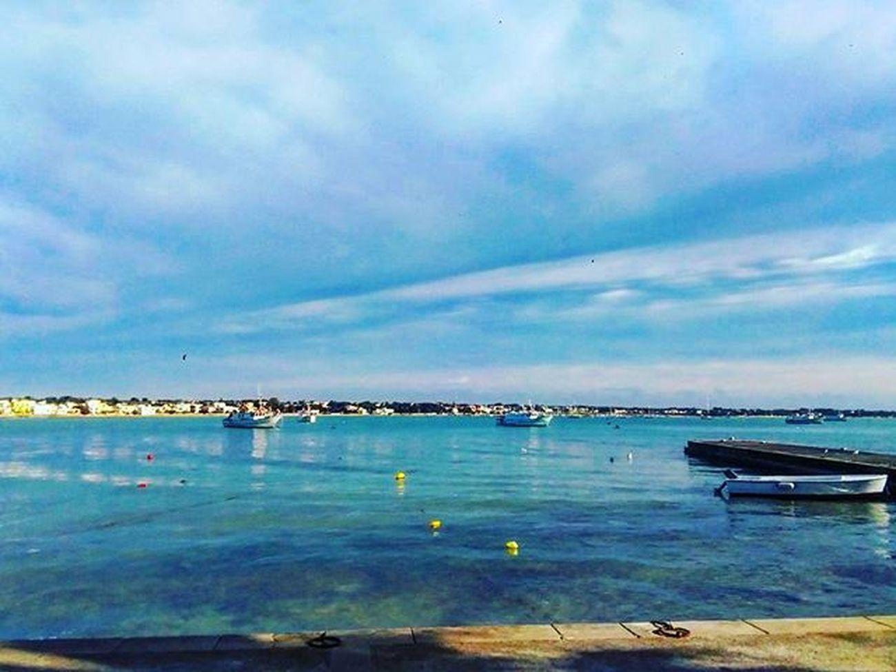 Beautiful Sea Sealife Sealovers Live Life Lifestyle Italianstyle Italy Salento Salentostyle Portocesareo Wonderful Colorful Colours Seacolours Landscape Picoftheday Picoftoday Januaryphotochallenge