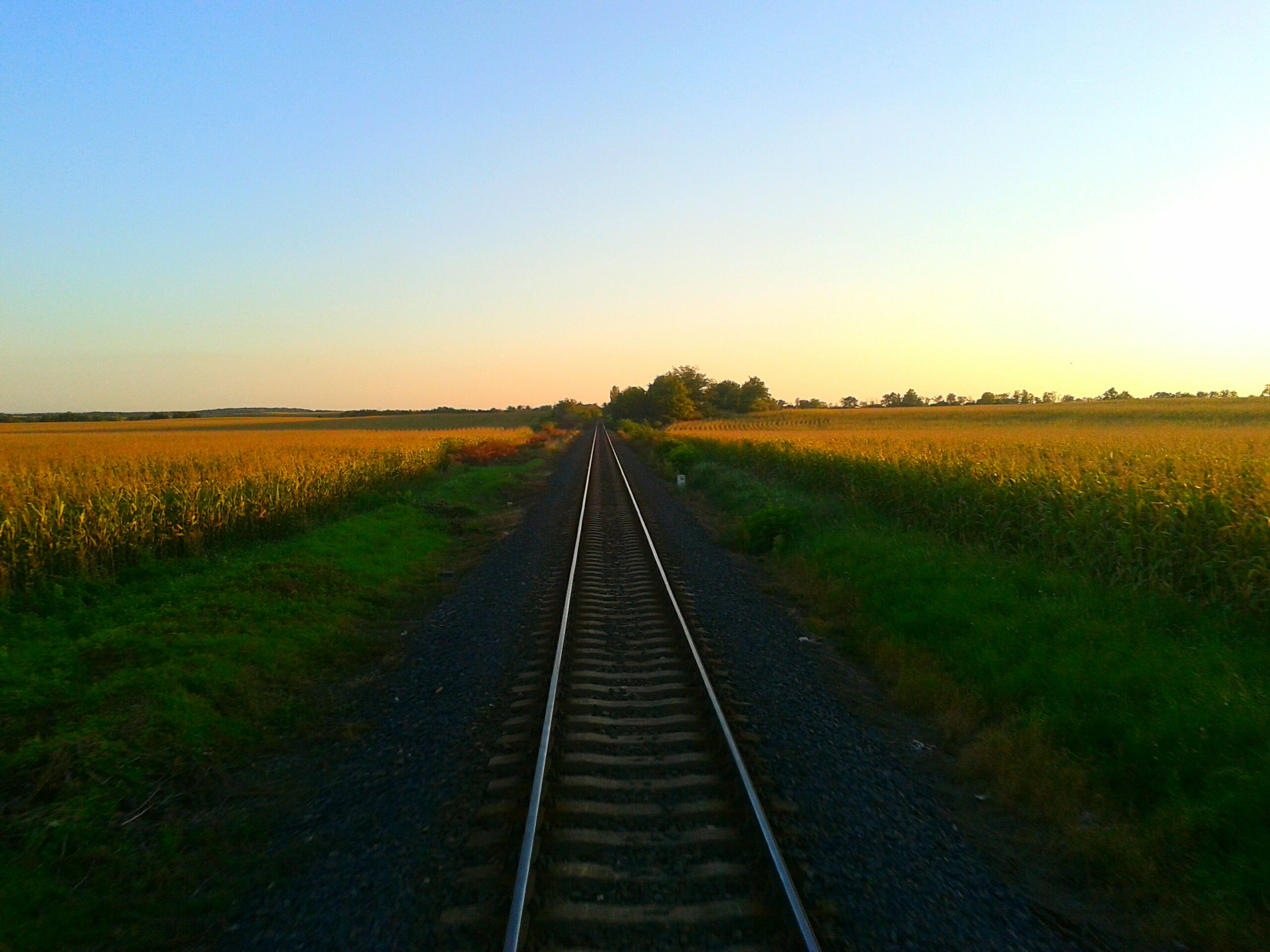 the way forward, transportation, vanishing point, diminishing perspective, landscape, railroad track, field, clear sky, tranquil scene, rural scene, rail transportation, tranquility, agriculture, nature, straight, grass, growth, sky, copy space, scenics