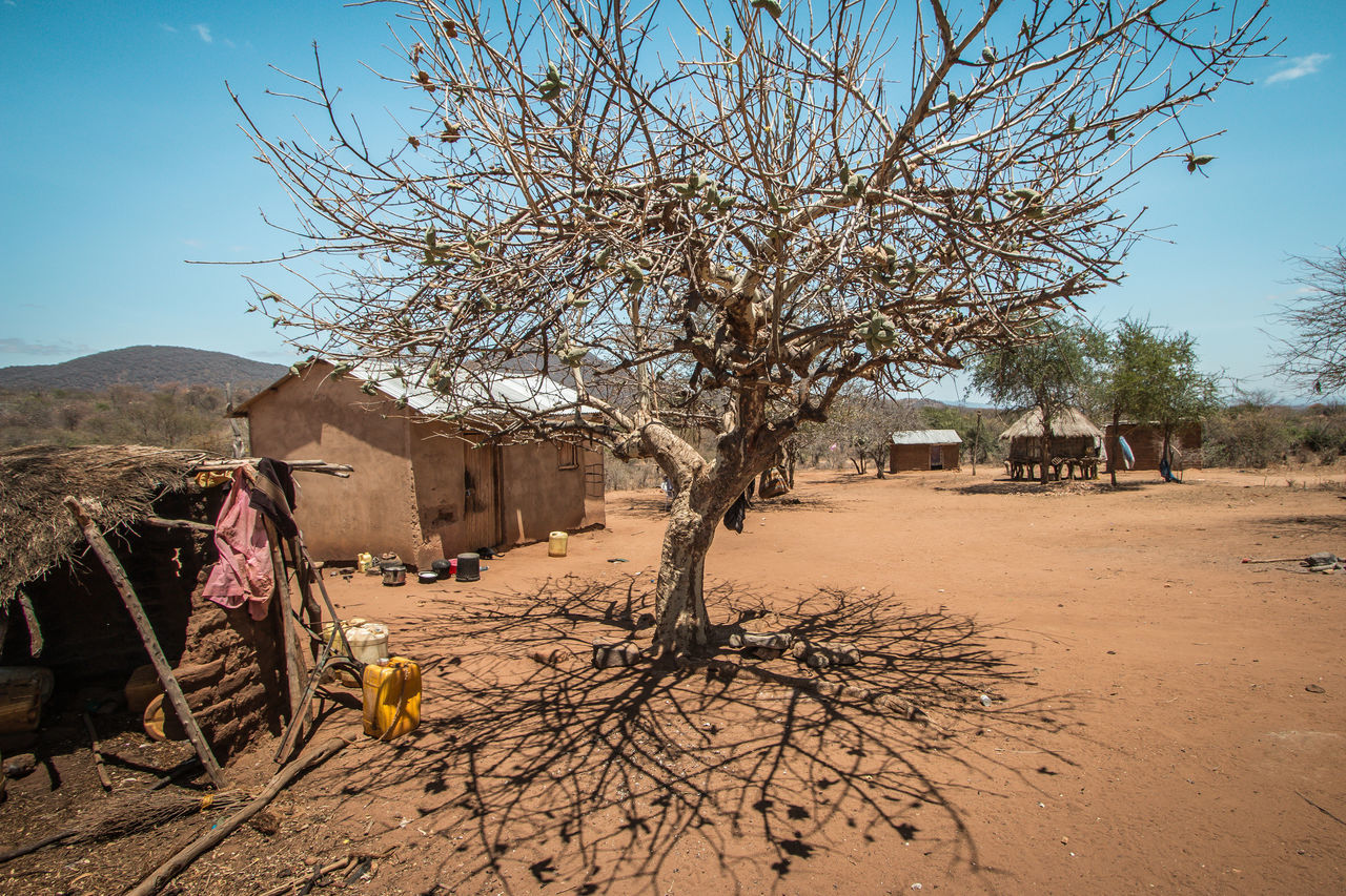 Africa African Arid Climate Clean Water Clear Sky Day Dry East Africa Food Hardship Kenya Mud Hut Nature Needy No People Outdoors Poor  Poverty Rural Sky Tree