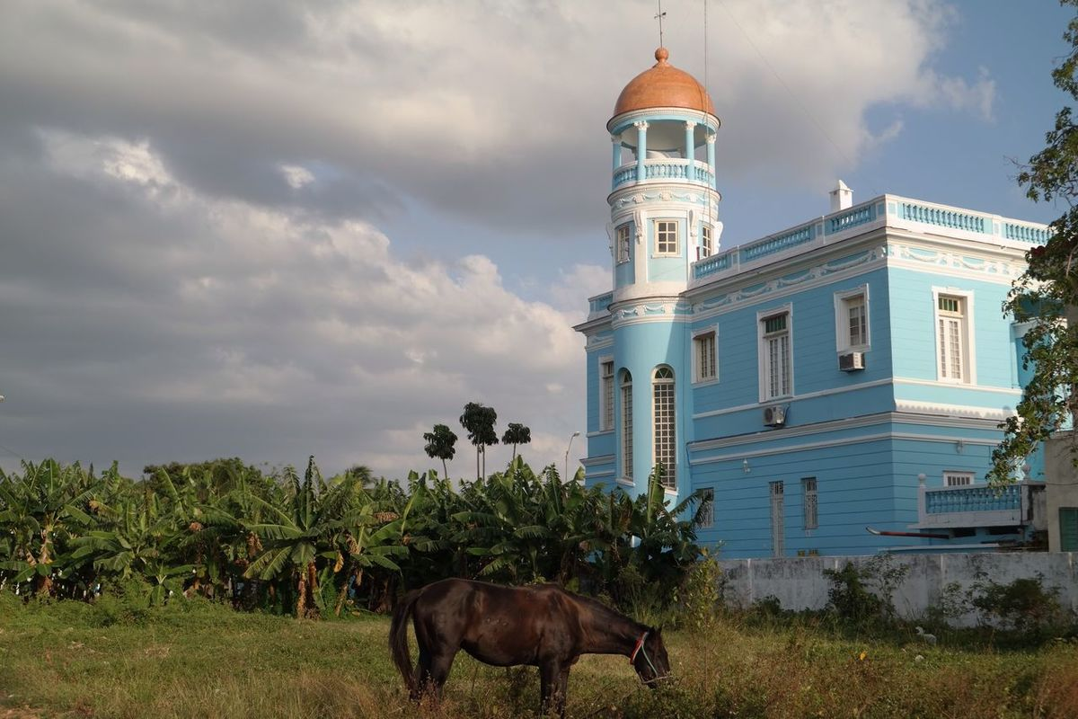 Cuba Cuba Collection Cienfuegos, Cuba Old House Colors Colorful Horse From My Point Of View