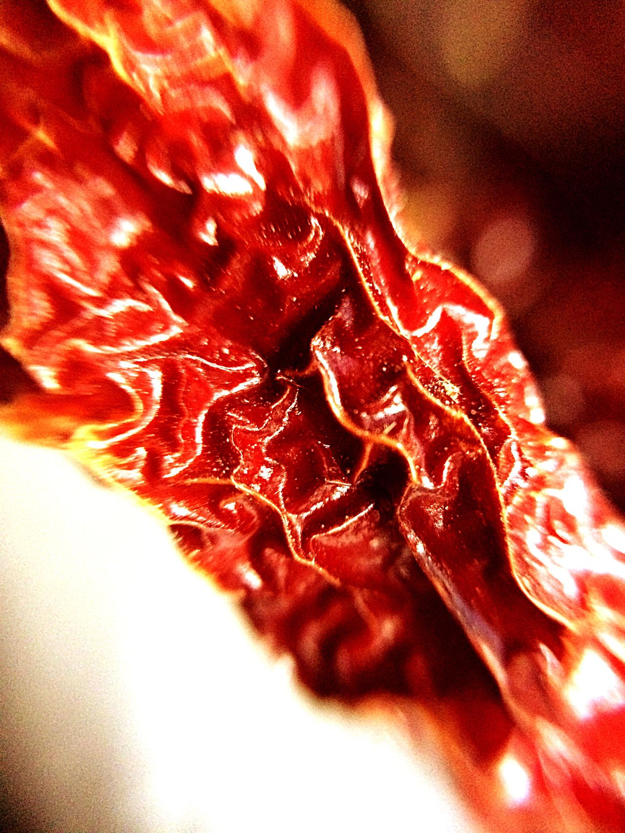 Red Chilly Macro Photography Macro Close-up Freshness No People Food Pattern Spices Indian Spices Red Red Hot Chili Peppers Dry Chillies Red Chillies Wrinkles Eye4photography