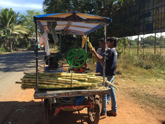 Sugarcane Juice Vendor Goa India Outdoors Street Photography Street Vendor Sugarcane Juice Sugarcane Seller Sugarcanejuice Thirst Quencher Incredible India Street Food Daily Life India Retail