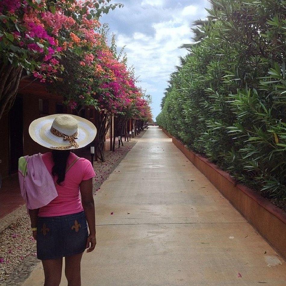 TBT  Zanzibar Endless Boulevard NotReallyEndlessTho MyOgaAtTheTop TheMrs @gbohunmi