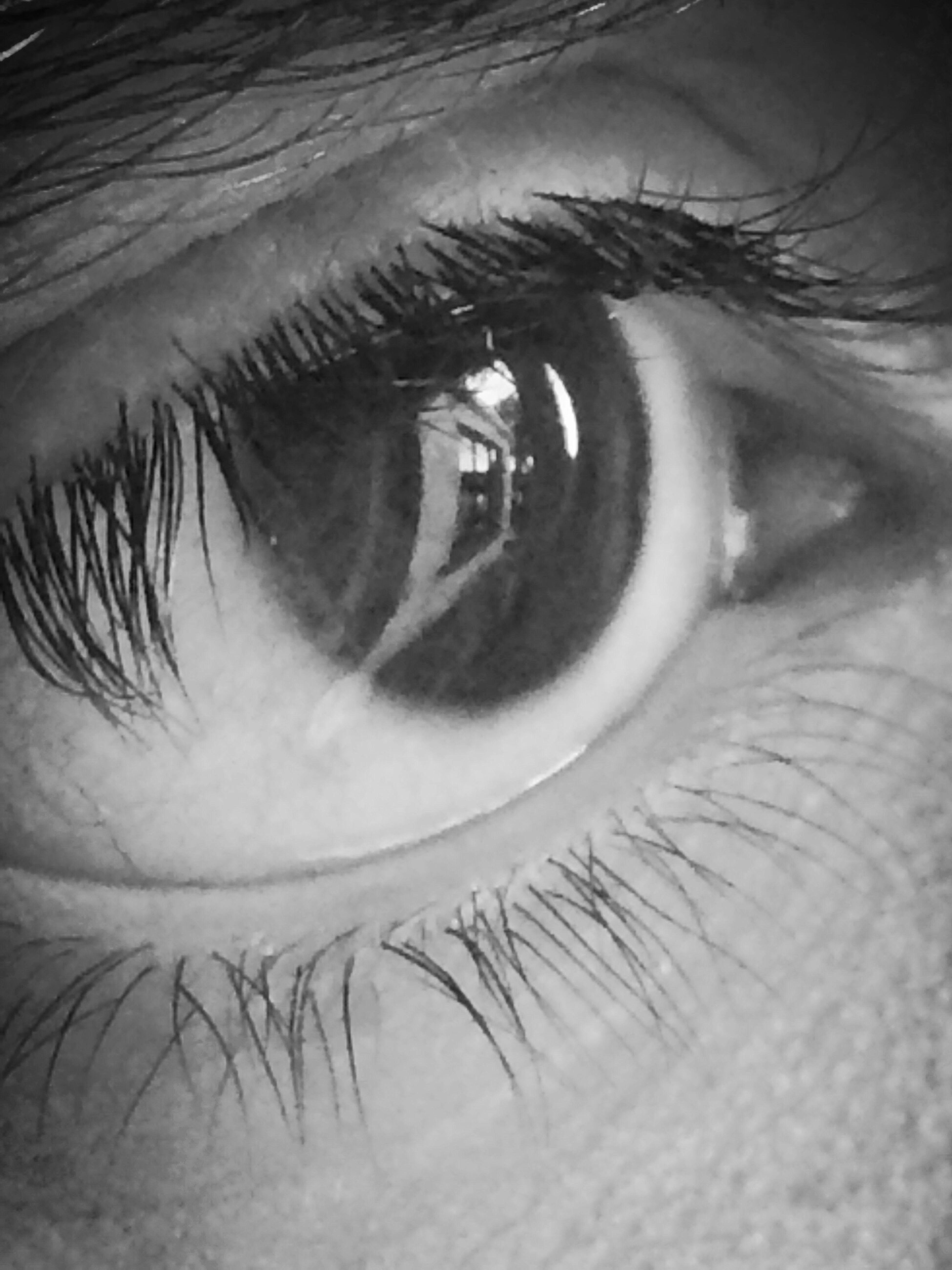 Window To The Soul Reflection Eyeem Eye Eye