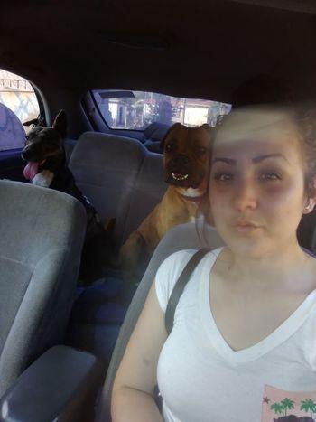 Sunday Dogs Car Pets Love Me Enjoying Life Hanging Out Friends Life<3 Chato Ilovemydog Beach Beachlovers Beach Time Ensenada B.c. Cantu ♡