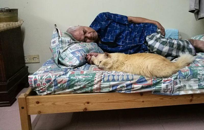 Sahabat sejati 💗 Pets Sleeping First Eyeem Photo