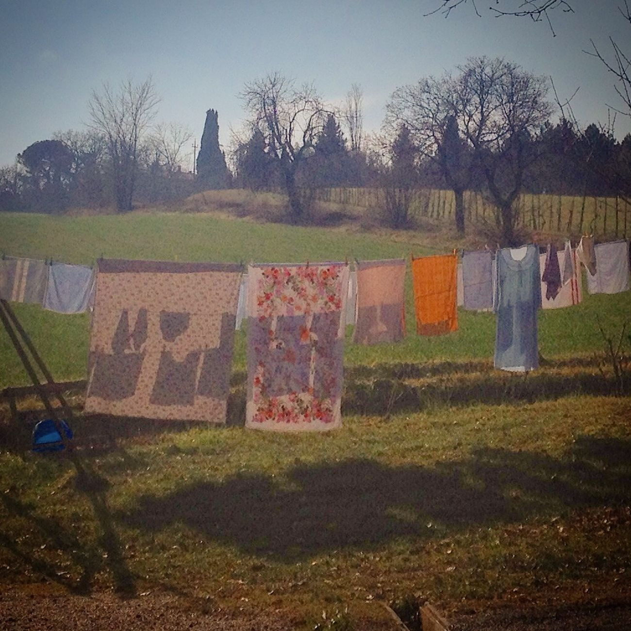 Fresh smelling laundry Everyday Joy Eye4photography  Eye Em Nature Lover EyeEm Best Shots