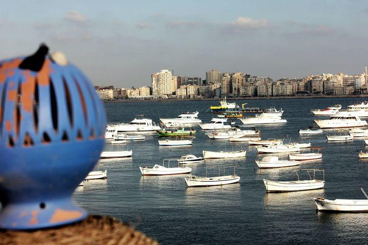 Alexandria Sea Beach Sky City Outdoors Water