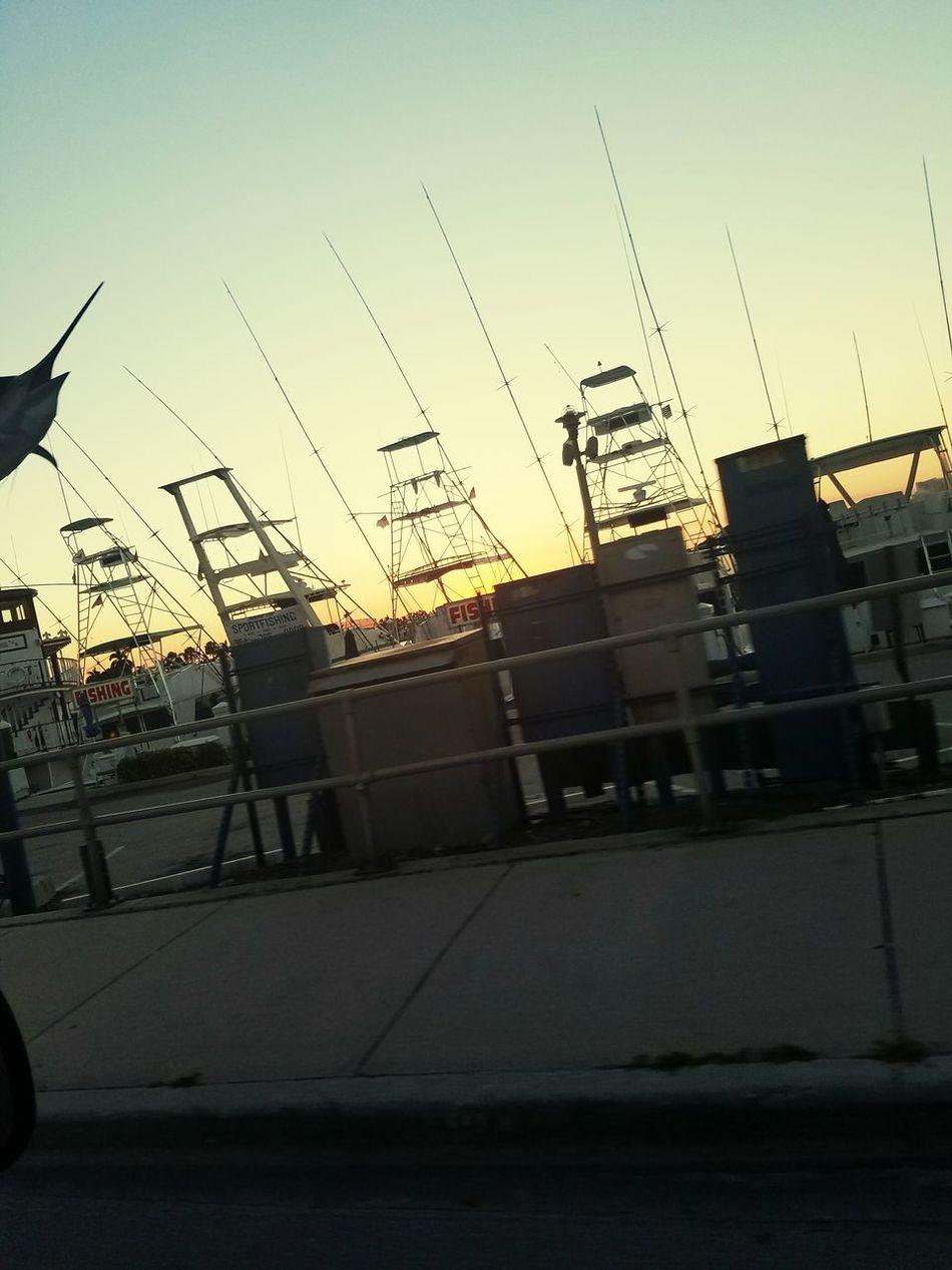 Ft Lauderdale 954 Sunset Florida Urban Salt Life Fishing