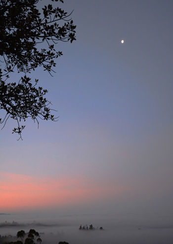 Good Saturday morning Fallbrook. Three views of the low lying fog and colorful skies California Colors Dramatic Sky Fallbrook Fog S Sunrise