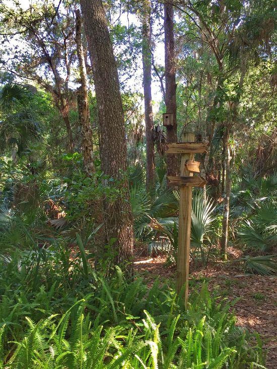 Trail markers in Erna Nixon Park Melbourne Village Trails Trail Marker Bird House Florida Park Erna Nixon Park