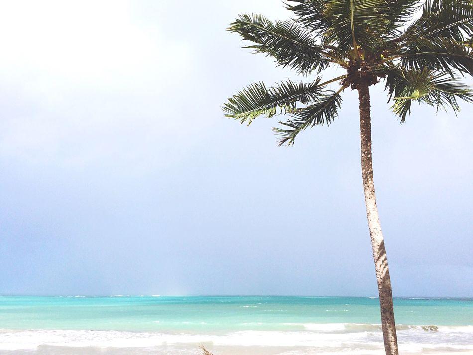 Beautiful stock photos of jamaica, Beach, Beauty In Nature, Blue, Brazil