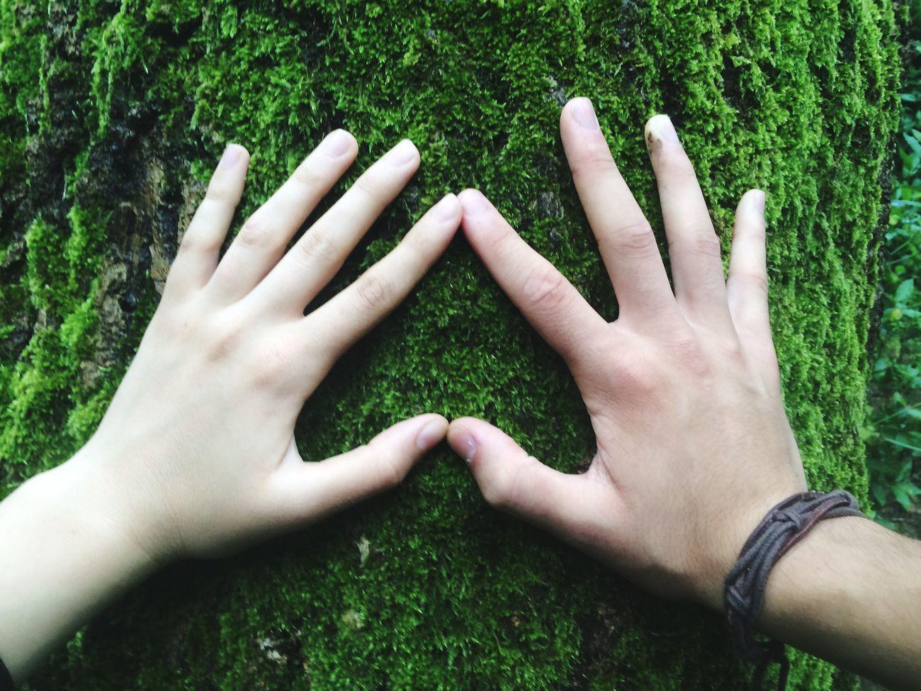 Life is beautiful. Green Heart Hello World Eye4photography  EyeEm Nature Lover EyeEm Best Shots Enjoying Life Nature Trees OpenEdit