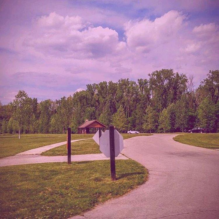 Hi Follow Like Sky Pink Trees Street Path Park Slefie Nature Sign Pathways Success UY