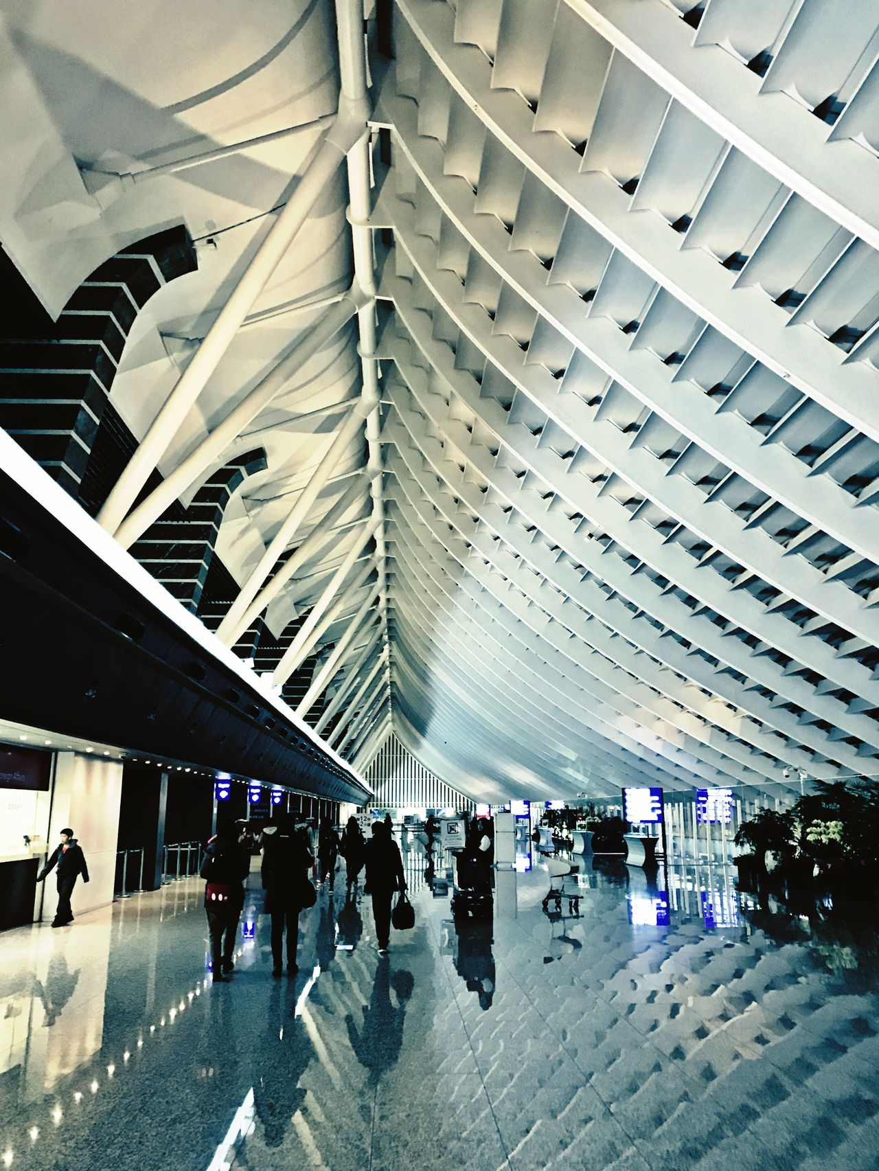 Large Group Of People Travel Architecture City Life Built Structure Modern Crowd Commuter Reflection Real People People Travel Destinations Futuristic Indoors  Journey Public Transportation Traveling Passenger Airport Airportphotography Taoyuan International Airport Taipei Taipei,Taiwan Taiwan Futuristic