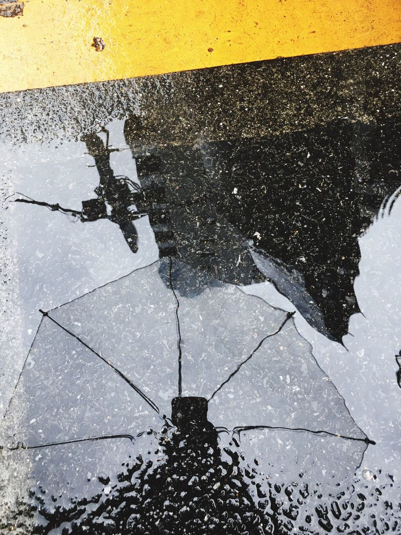 Reflection Puddle Wet Water Rain Umbrella Street