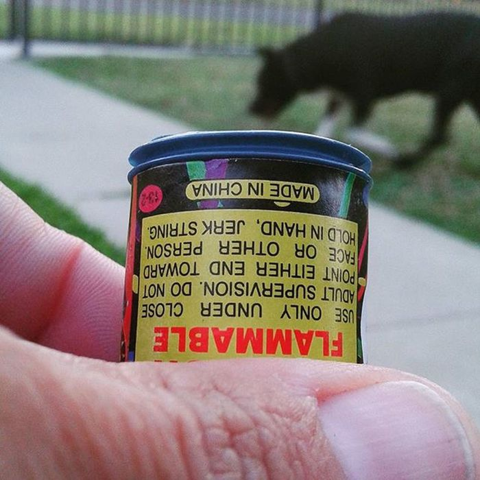 Flamable Pop Safeandsanefireworks Dog 4th Of July Madeinchina Tnt Partypoppers PopIt Poppers