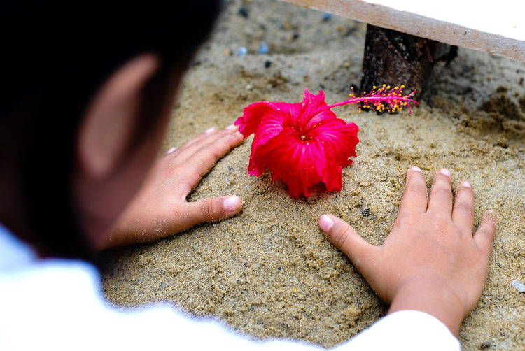 Take good care of yourself...Hibiscus Flower Hibiscus Journey Hibiscus Sands