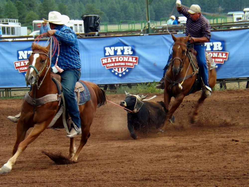 Rodeo Cowboys Horses Team Roping