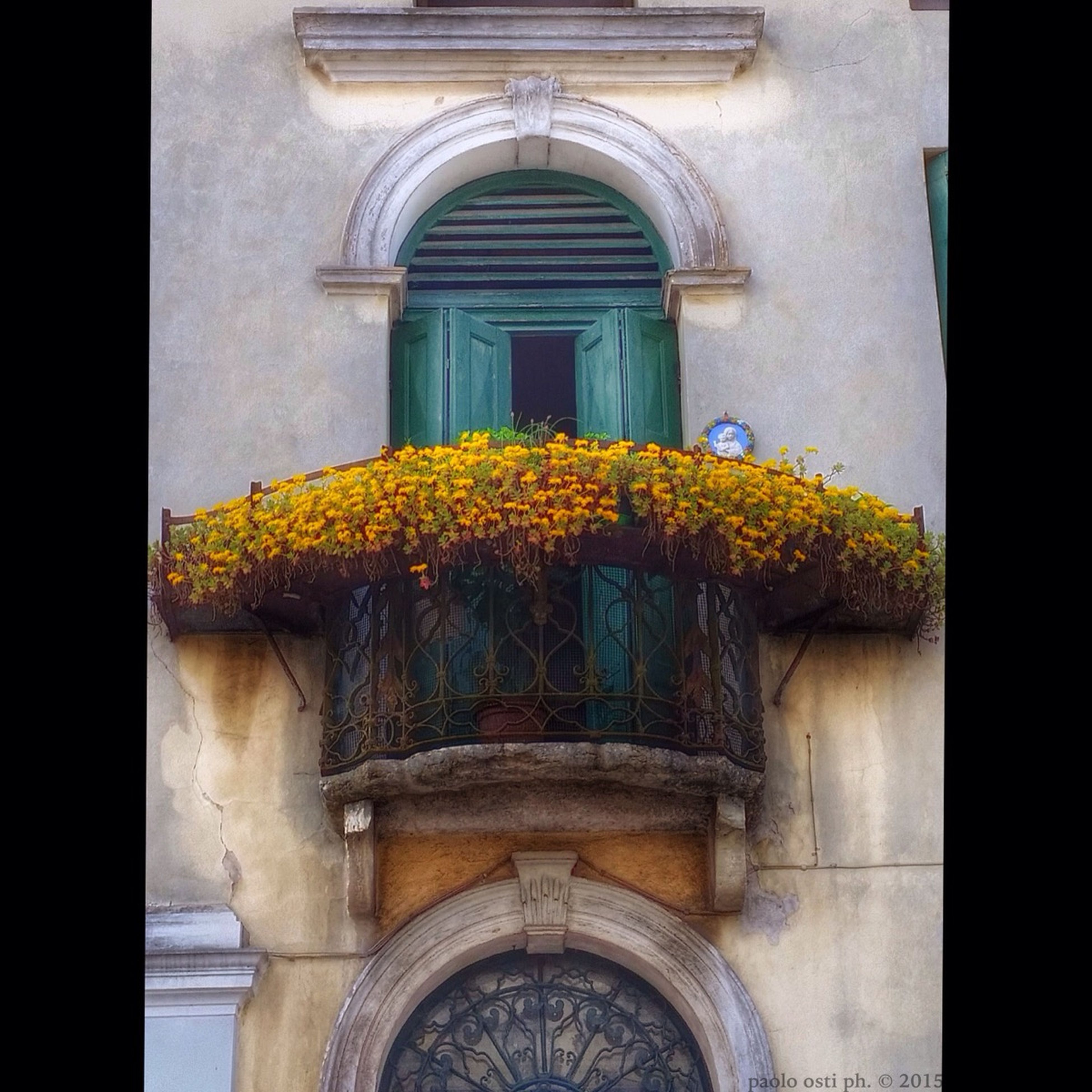 architecture, built structure, arch, building exterior, window, place of worship, religion, church, spirituality, door, entrance, low angle view, yellow, flower, facade, indoors, closed, ornate