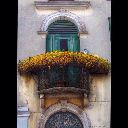 Balcone fiorito Balconi Fiori Polesine Lendinara Veneto