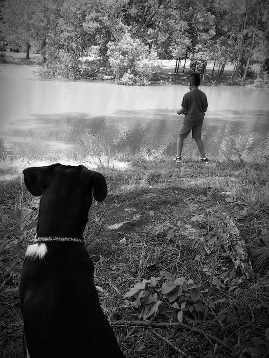 Black & White Black And White Fishing Pond Lazy Day Mans Best Friend