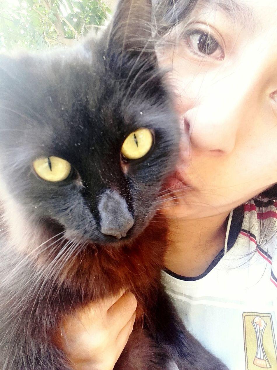 ❤ Lovecat  Migato Cute Selfiecat Lunes Hi Kiss Love Life