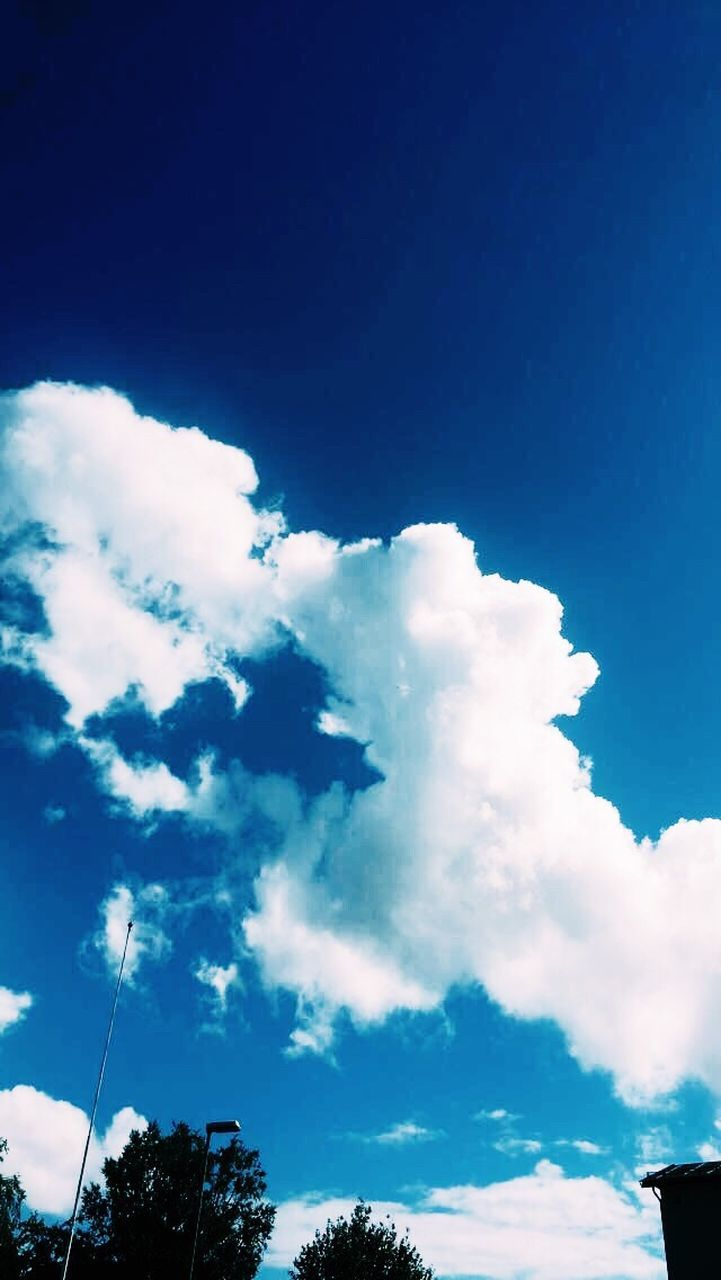 sky, low angle view, cloud - sky, blue, beauty in nature, nature, no people, outdoors, day, scenics, tranquility, tree