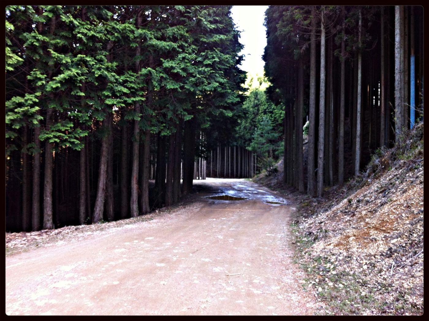 Rapha Gentlemens Race Kyoto