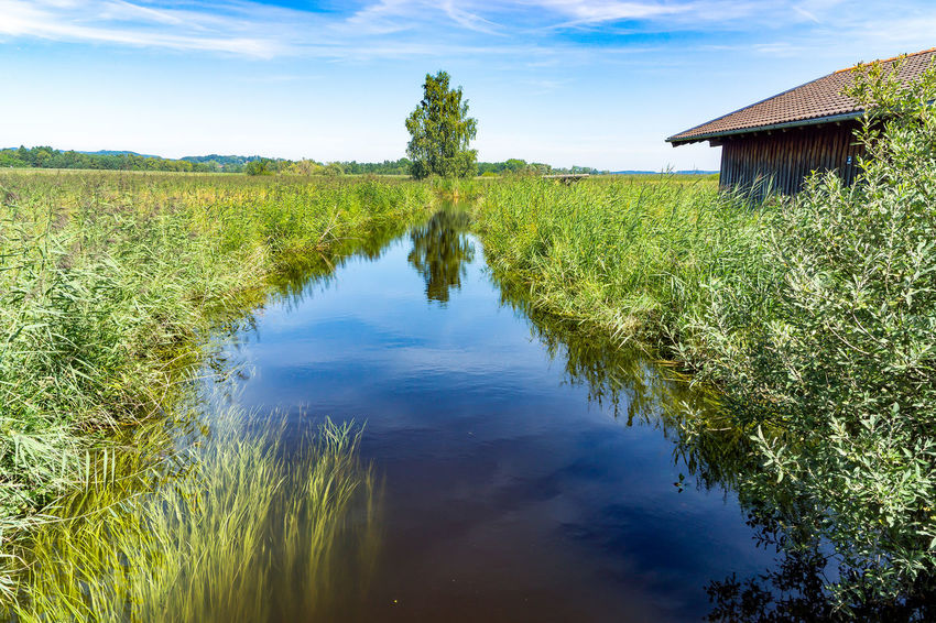 Small river and hut Agriculture Architecture Building Exterior Day Field Grass Growth Lake Landscape Nature No People Outdoors Plant Rice Paddy Scenics Sky Tranquil Scene Tranquility Tree Water