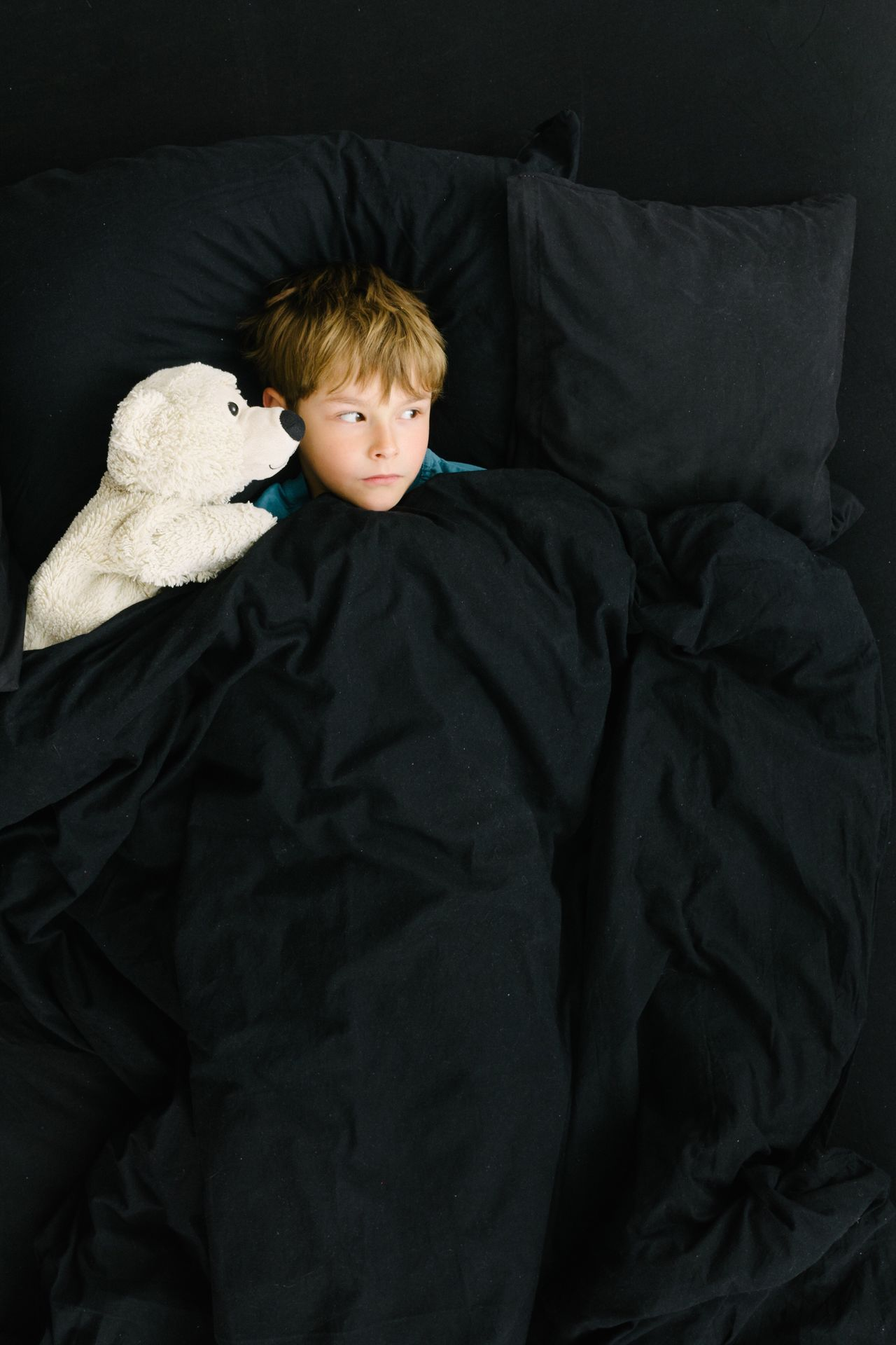 Boy and his ice bear in black bed covers Welcome To Black Boy Child Ice Bear Toy Plüschtier Friends Imagination Bed Black Empty Kids Covered Sheets People Portrait One Boy Only Light And Shadow Berlin Waking Up Awake
