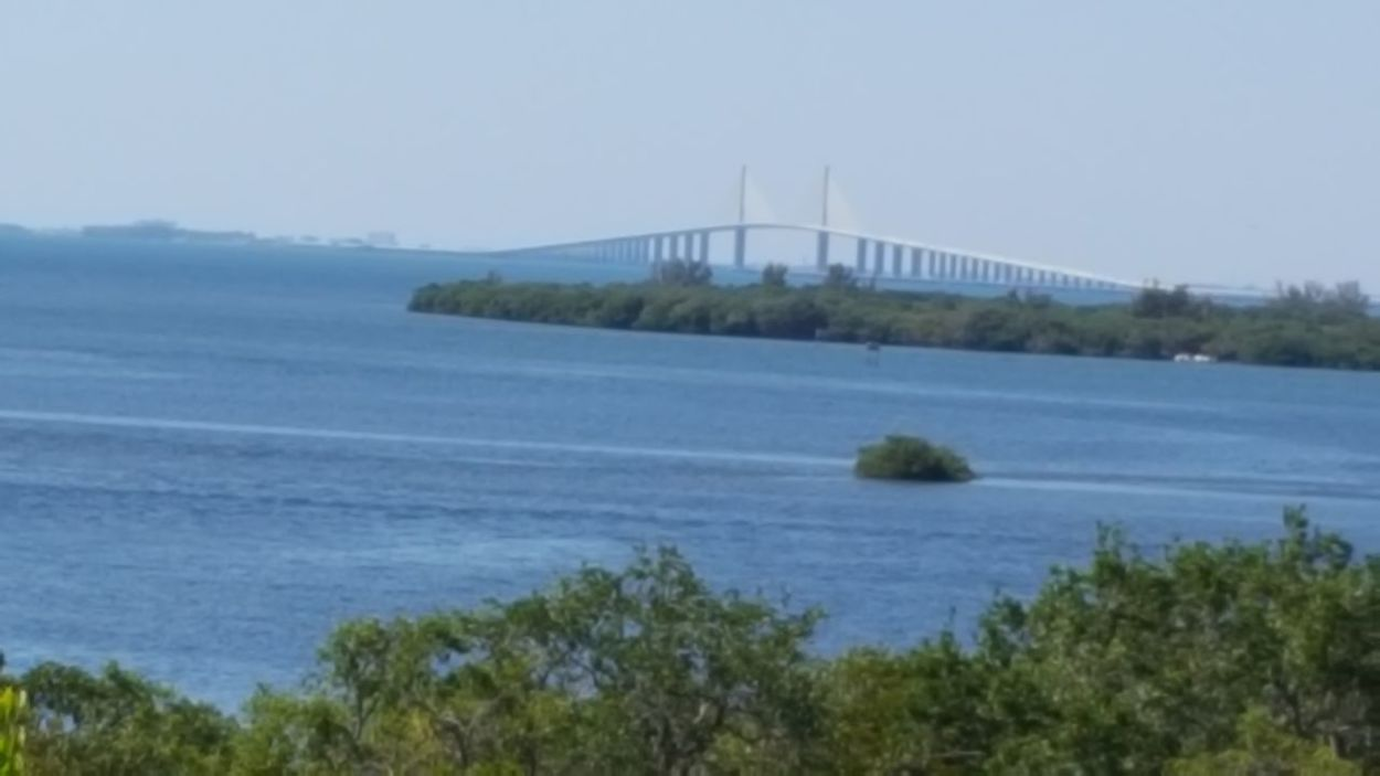 Sunshine Skyway Bridge Sunshine Skyway Bridge Top Of Tower Emerson Point Hiking Adventures Riding Around Florida Life Clear Day Blue Sky Blue Water Tampa Bay
